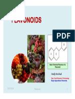 Flavonoids-Slide Kuliah