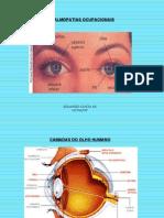 Aula Ocular