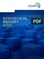 Eurogas Statistical Report 2013