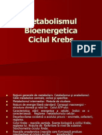 Metabolismul Energetic Ciclul Krebs