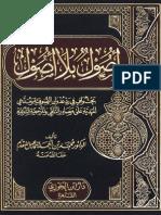 محمد إسماعيل المقدم - أصول بلا أصول