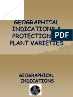 GI & Protection of Plant Varieties