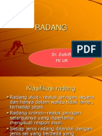 RADANG.ppt