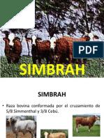 SIMBRAH.pptx