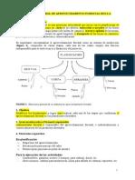 Manual de Aprovechamiento Forestal Rgi Sa