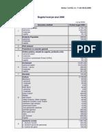 Buget 2008 (2)