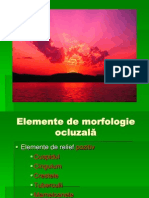 morfologie ocluzala