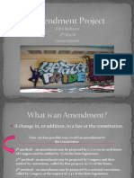 amendment project
