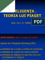 INTELIGENTA (1)