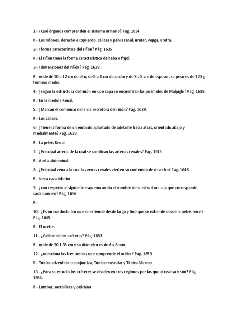 Moderno Anatomía Y Fisiología Del Sistema Reproductivo Cuestionario ...