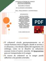 Expo Colestero Bioquimica