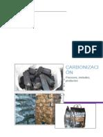 PROCESOS DE CARBONIZACION.docx