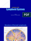 Blockxiv Neoplasms Lymphoid 2006