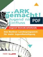 Broschüre zum Jugend-Demokratiefonds Berlin