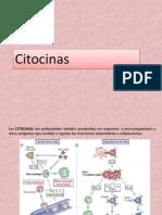 Citocinas Clase