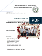 Mejoramiento de Los Ingresos y Economia Familiar