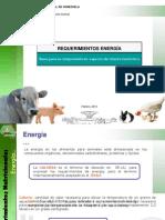 3. Requerimientos de Energía