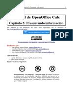 ManualOOCalc_Cap5