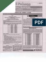 Publicacion en El Peruano