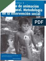 TEMA 3 EL PROCESO DE ANIMACIÓN SOCIOCULTURAL. METODOLOGÍA DE LA INTERVENCIÓN SOCIAL