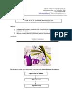 Manual VMD