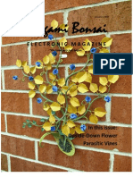 Origami Bonsai Electronic Magazine Volume 2 Issue 1