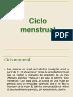 Desarrollo Prenatal