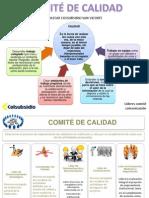 Comité de Calidad Roles y Funciones- 15 Marzo - 2014 (1)