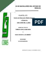 Proyecto de Valores Siviva-san Jose Del Llano