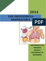 PAE IRC