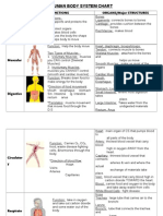 Human Body Systems Chart With Pictures Answers-option A