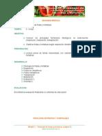 FISIOLOGIA DE FRUTAS Y HORTALIZAS.doc