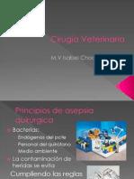 Cirugía veterinaria 2