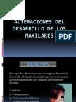 Alteraciones Del Desarrollo de Los Maxilares