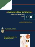 Fisiopatologia y Manejo de Las Heridas 09