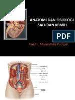 Anatomi Dan Fisiologi Saluran Kemih-stikes