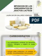 Descomposicion de Los Carbohidratos en Productos Lacteos