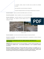 Deseurile Din Rm Microsoft Word (3)
