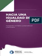 HIG-Programa Politicas Genero1