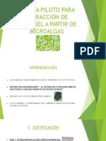 PresentaciónPlantaPiloto