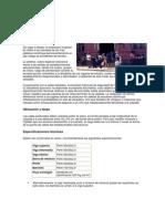 Fichas Accion Ficha 3 Vallas Peatonales