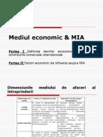 800-Curs 6 MAI Mediul Economic Nou