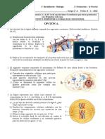 membrana plasmatica.pdf
