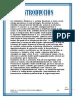Administracion de La Seguridad y Proteccion Ambiental-unidad1