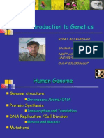 An Introduction to Genetics