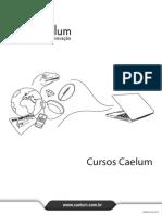 Caelum Java Testes Jsf Web Services Design Patterns Fj22