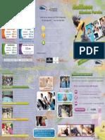 Folleto Informativo MSP Tarifas y Servicios