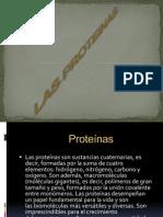 Presentacion de Las Proteinas