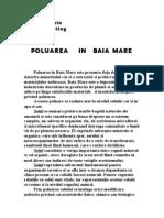 poluarea in Baia Mare.doc