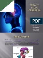 Tema 12 TALLO Cerebral
